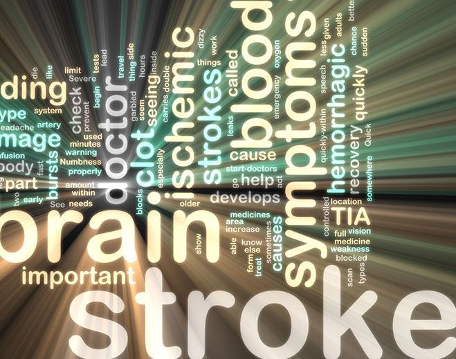 stroke-placeholder2